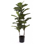 FIDDLE LEAF TREE 1130MM