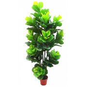 FIDDLE LEAF TREE 1750MM