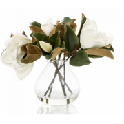 Magnolias in Glass Vase