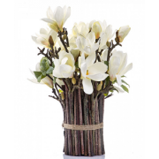 Magnolia Tree Bundle White
