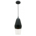 CONCAVE MATT BLACK CLEAR PENDANT