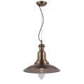 MARION COPPER INDUSTRIAL PENDANT
