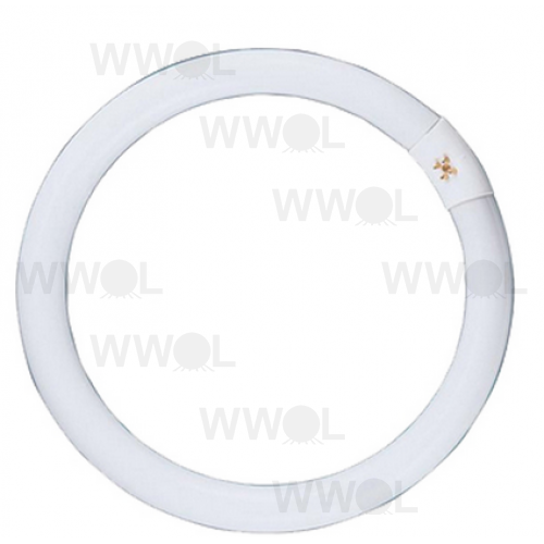 22 WATT CIRCULAR T9 FLUORO LAMP 5000K NATURAL WHITE